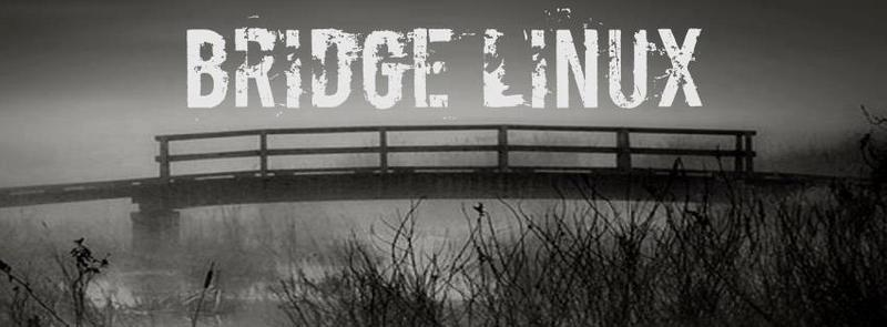 Bridge Linux 2012.12