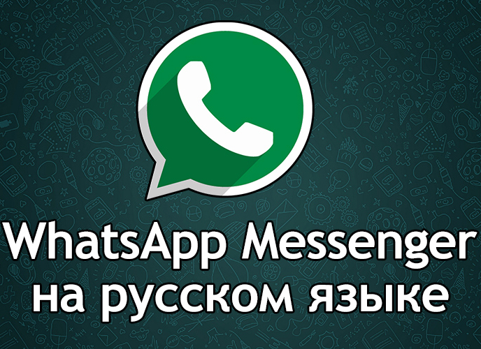 WhatsApp 0.3.33